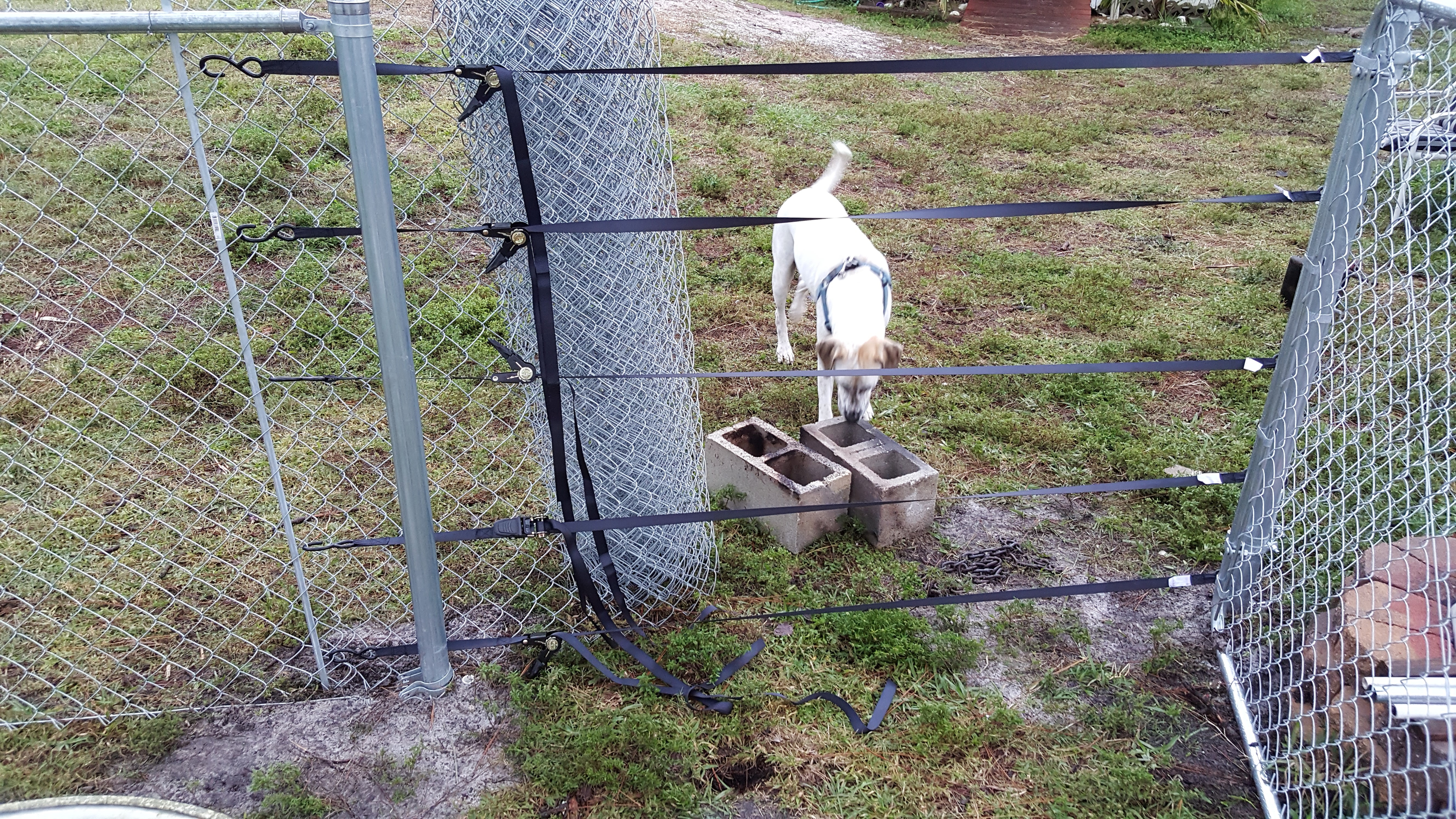 Pull A Fence Without A Fence Puller Or Come Along