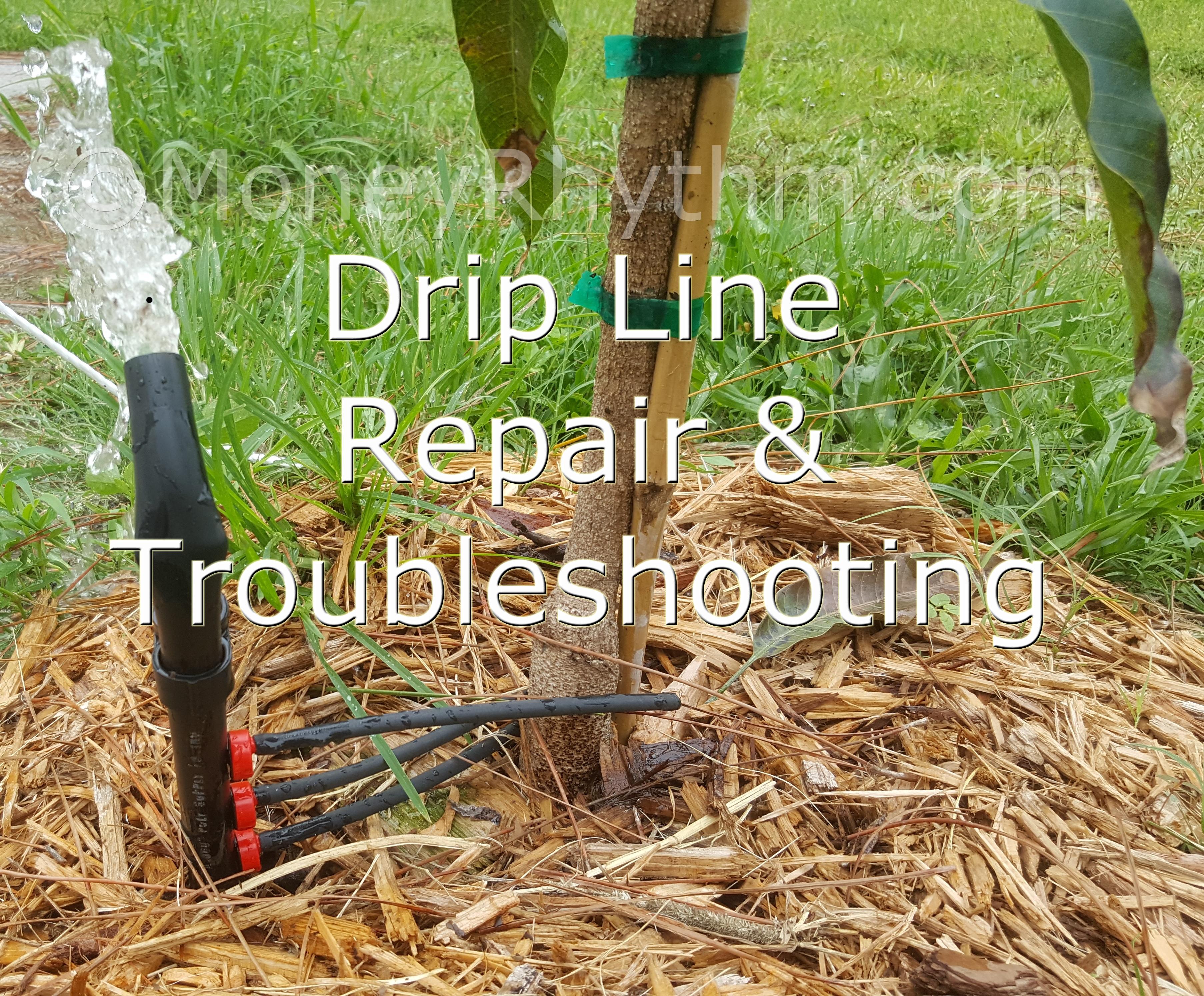 Broken Drip Line Repair Amp Troubleshooting Moneyrhythm